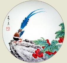 蓝鹊红果图图片