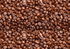 咖啡豆图案图片