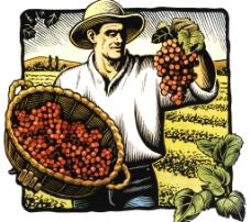 欧式农场插画图片
