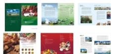 香料生产企业画册图片