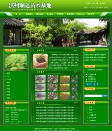 网页模板 苗木 绿色苗木图片