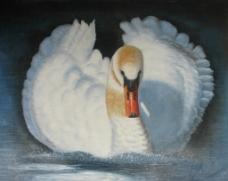 油画天鹅图片