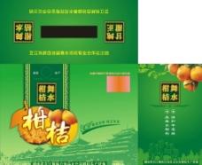 柑桔包装设计图片