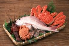 新鲜海鲜 海鲜素材图片