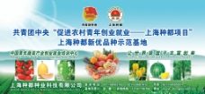 种都蔬菜广告图片