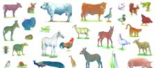 动物大集合图片