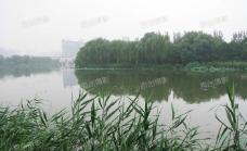 北京朝阳公园湖面景色图片