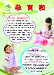 孕育期图片