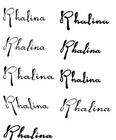 中国风手写书法英文字体