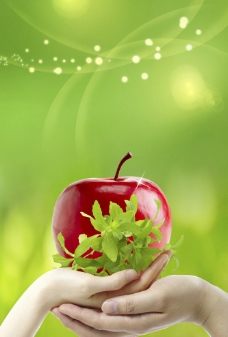手托红苹果图片