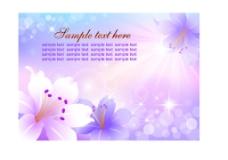 梦幻花纹花卉图片