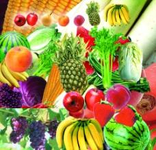 蔬菜 水果图片