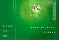 绿色科技 封面