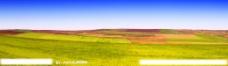 远山草原图片