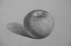 水果靜物素描圖片