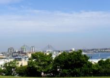 海湾景色图片