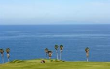 海边高尔夫球场图片