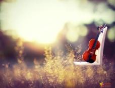 梦幻小提琴图片