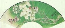 雀雀绿云中图片