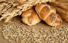 面包 小图片