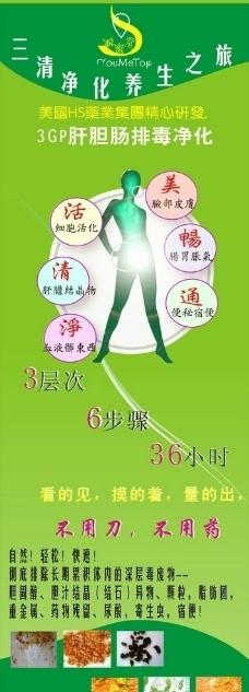 肝胆排毒灯箱片展板模板图片