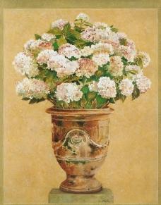 花盆 花卉绘画图片
