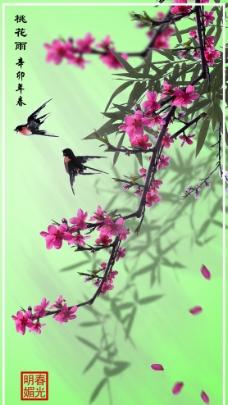 桃花雨花卉 植物素材图片