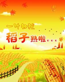 秋季秋收海报设计